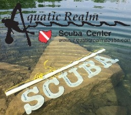 Aquatic Realm Scuba Center - Where Dreams meet Reality - Become a PADI Instructor