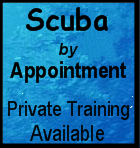 Scuba by Appointment - Private Training Available